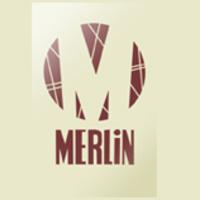 Merlin energia
