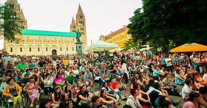 Pécsi Napok 2016: Aradról is érkezik színház