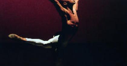 Világsztárok balettgálája