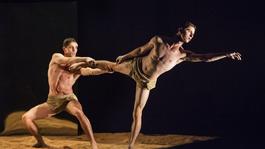 Különleges színházi-, tánc- és újcirkuszi előadások a CAFe Budapesten