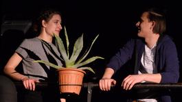 Agave - Miskolci mítosz a színpadon