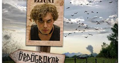 Tündérkert - Zenés mesejáték Szatmárnémetiben