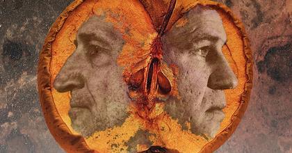 Ádám almái – A fejbe belevert valóság