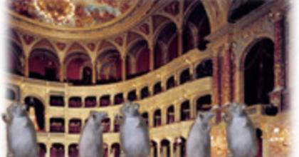 Szinetár szerint 'patkányok' támadják az Operát