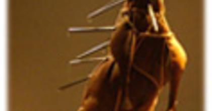 Pantagruel sógornõje - Hommage à Rabelais