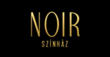 Közönségszervezőt keres a Noir Színház