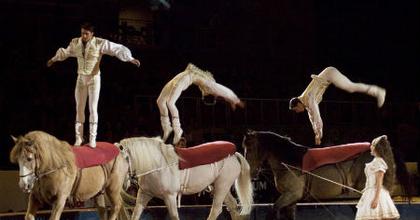 A 60 éves magyar cirkusz is bemutatkozik idén a POSZT-on
