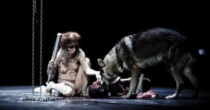 Élő farkasok lépnek fel a düsseldorfi táncszínházban