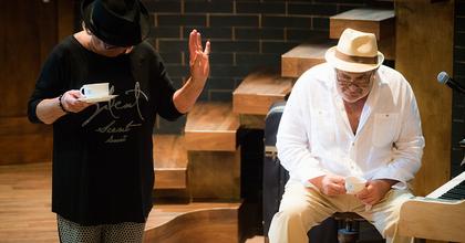 Csalogány Család - Gesztesi Károllyal debütál a Karinthy Színházban