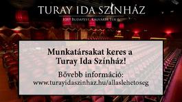 A Turay Ida Színház technikust keres