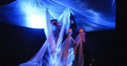 SZÍN-TÁR - Jön a színművészeti iskolák szemléje