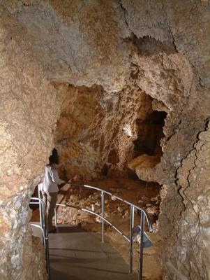Barlang_1