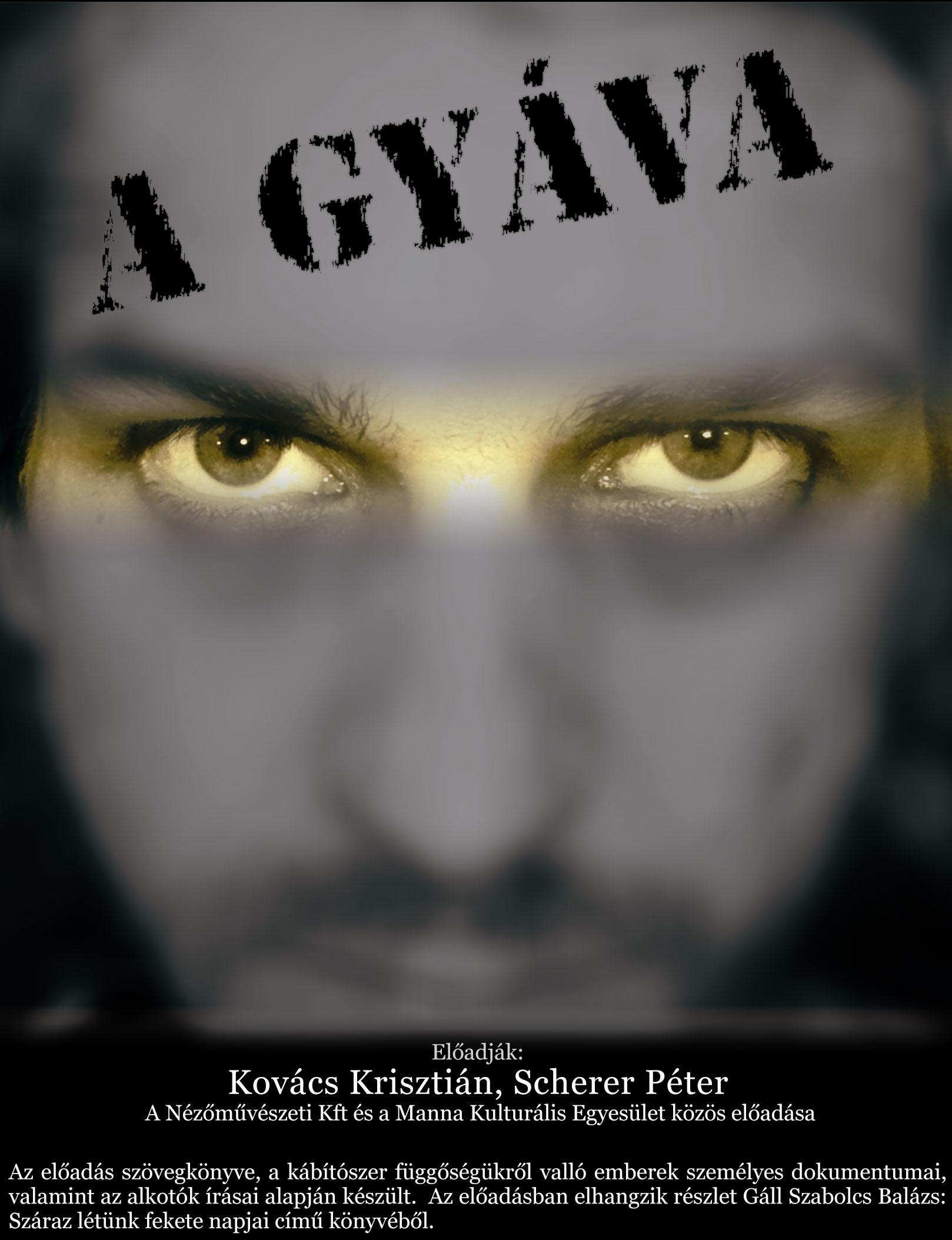 gyva_kis_form-Krisz