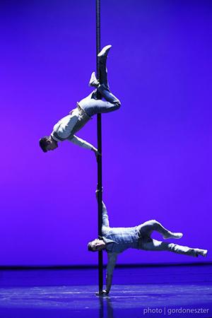cirkusz10