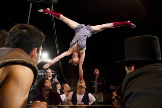 cirkusz1 m