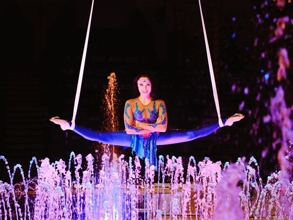 vizi cirkusz