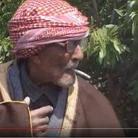 135 évesen is füstöl mint a gyárkémény