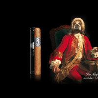 A Davidoff szivar kutyás reklámkampánya