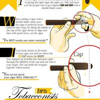 Hogyan kell a szivart levágni?