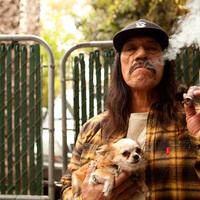 Danny Trejo alias Machete a filmvásznon és a magánéletben is szivarozik