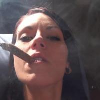 Karolina füstbe borul