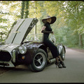 Luxus autók - Luxus szivarok - Luxus nők