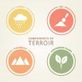 Terroir - Mitől függ hogy hol milyen dohány terem?