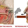 Hogyan fújjam ki a füstöt? Szivarfüst szájon át, vagy orron keresztül?