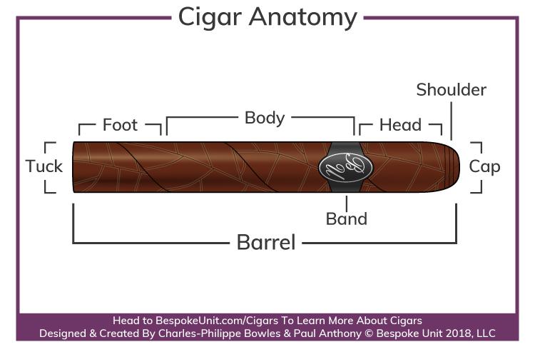 cigar-anatomy-parts-diagram.png
