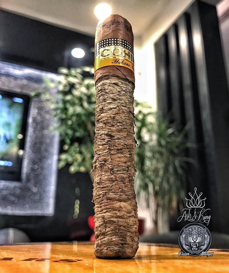 cigar_ash_king_longest_cigar_ash_cigar_ash_stand_cigarmonkeys_com_cigar_luxury_style_2.jpg