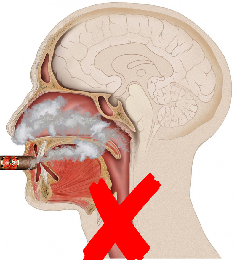 infographic-dont-inhale-cigar-smoke.jpg