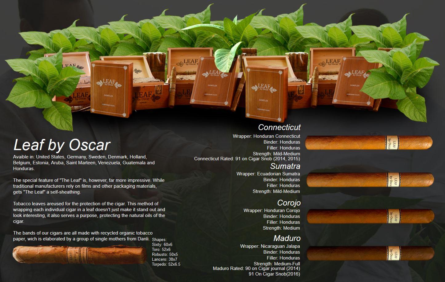 leaf_by_oscar_valladares.JPG