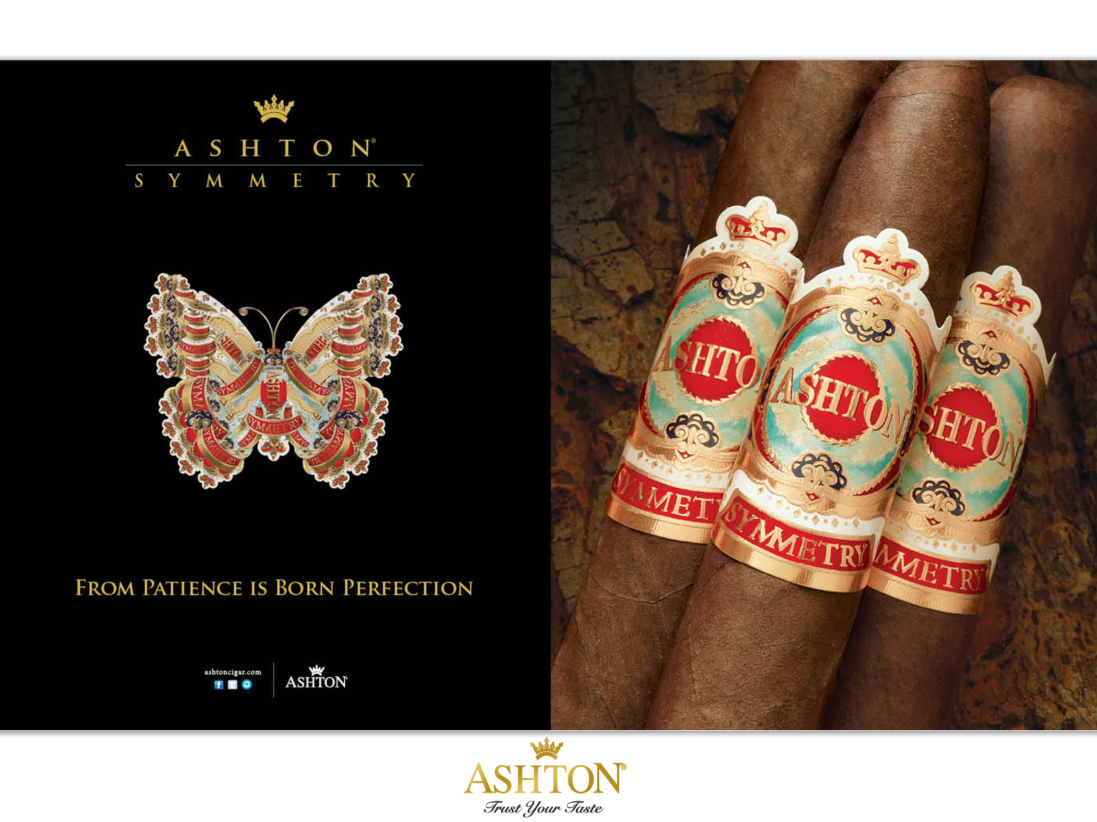 ashton_cigars_advertising_campaign_cigarmonkeys_2.jpg