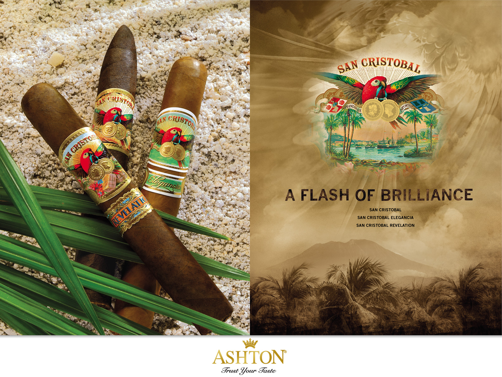 ashton_cigars_advertising_campaign_cigarmonkeys_6.jpg