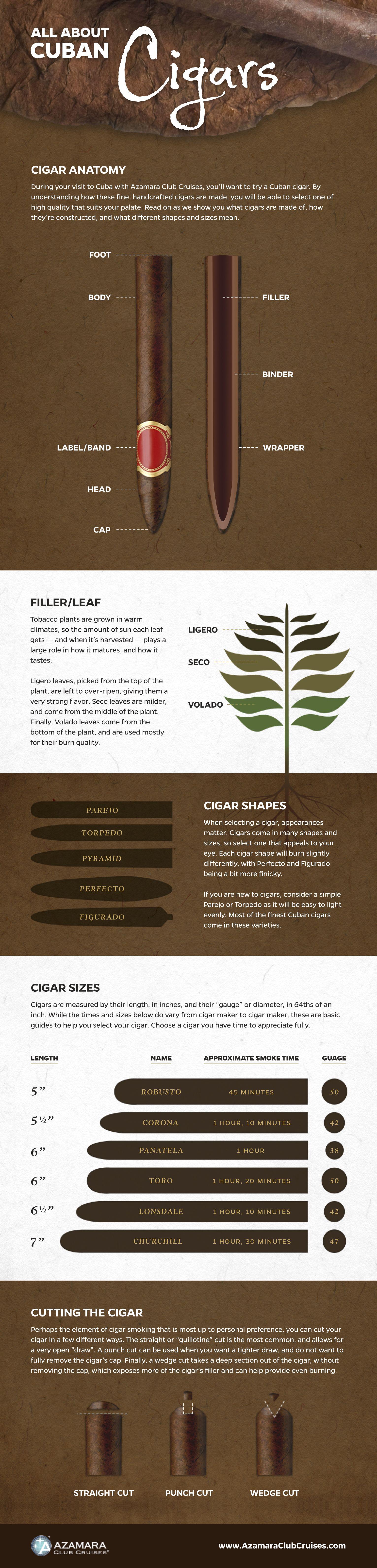 minden_amit_egy_szivarrol_tudnod_kell_--cigar-infographic-white_1.jpg