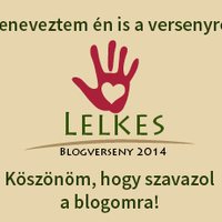 LELKES blogverseny 2014