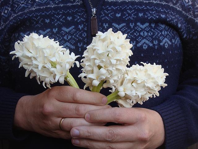 hyacinths-1339836_640.jpg