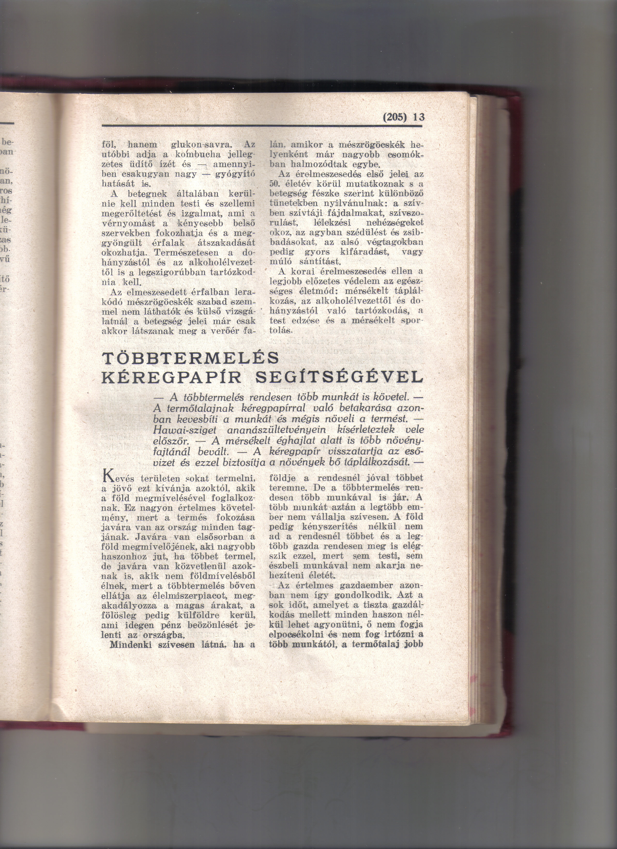 papir1.jpg
