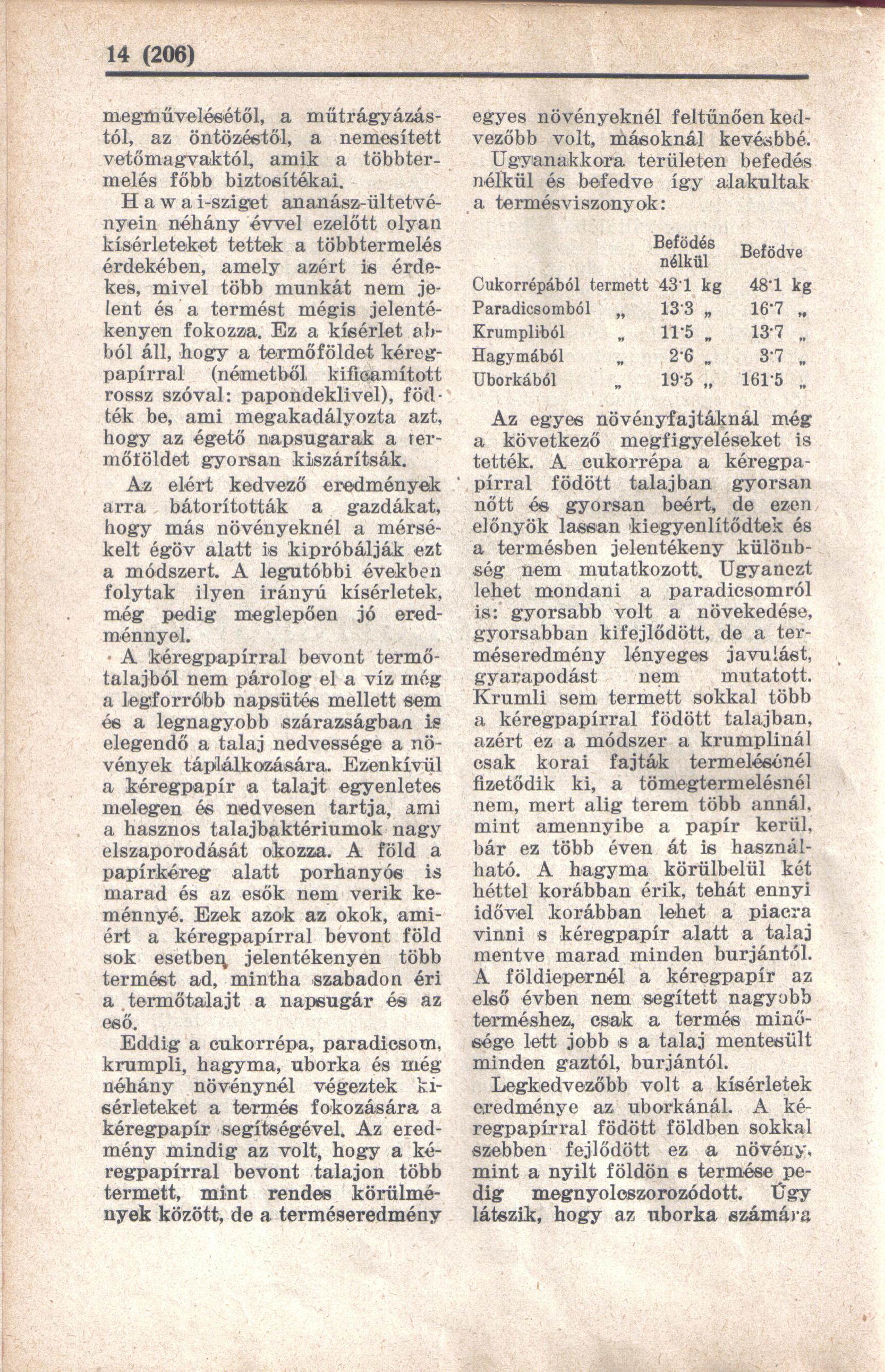 papir3.jpg