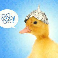 Szkeptikus Klub: Hírek és álhírek, tudomány és áltudomány a sajtóban