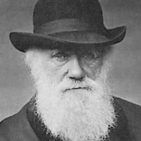 Darwin üzenete a 21. századnak