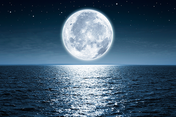 wall-murals-full-moon-night.png