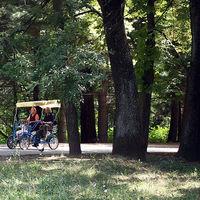 Süt a nap, irány a szabad! - A Szláv Textus park toplistája