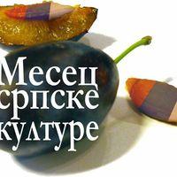 A Szerb Kultúra hónapja programsorozat már elstartolt