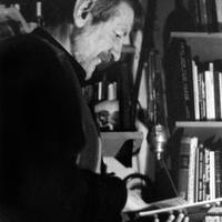 Könyvajánló: Branislav Brković - A valóság legvégső változata