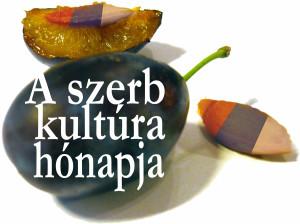 szerb kultúra.jpg