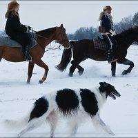 Múltidézés: orosz vadászat
