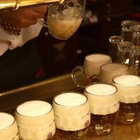 Hét meglepő tény, amelyet nem tudtál a cseh sörkultúráról