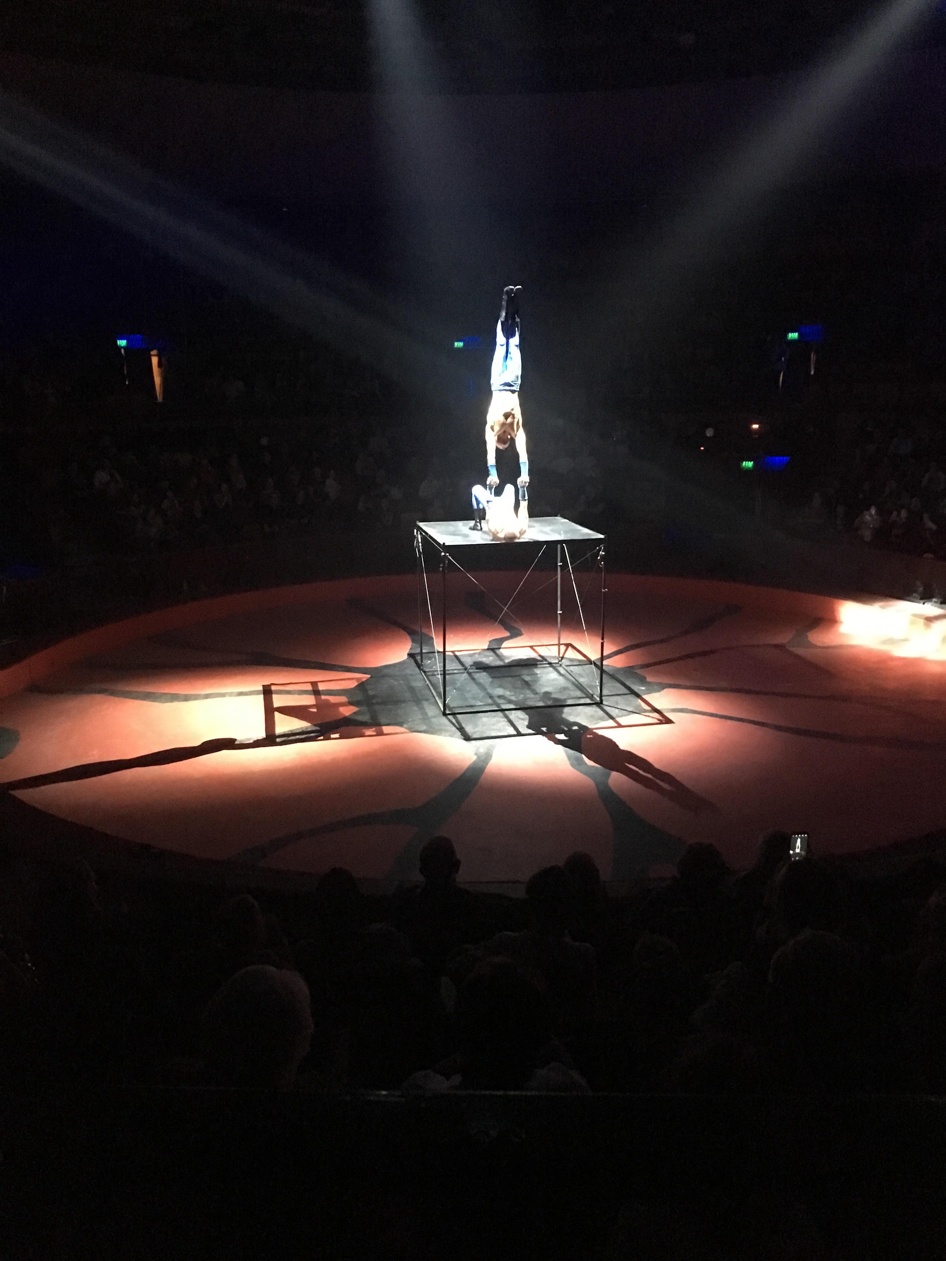 cirkusz4.jpg