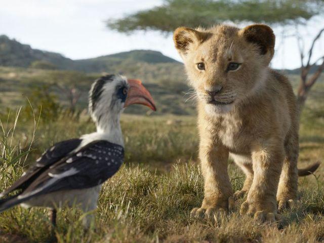 Vélekedés - Az oroszlánkirály